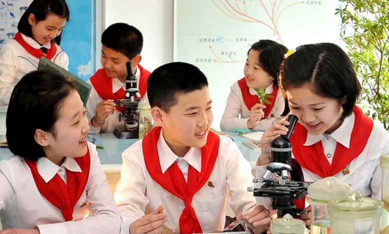 Die erworbenen Kenntnisse werden durch Experimente und Praktika gefestigt.