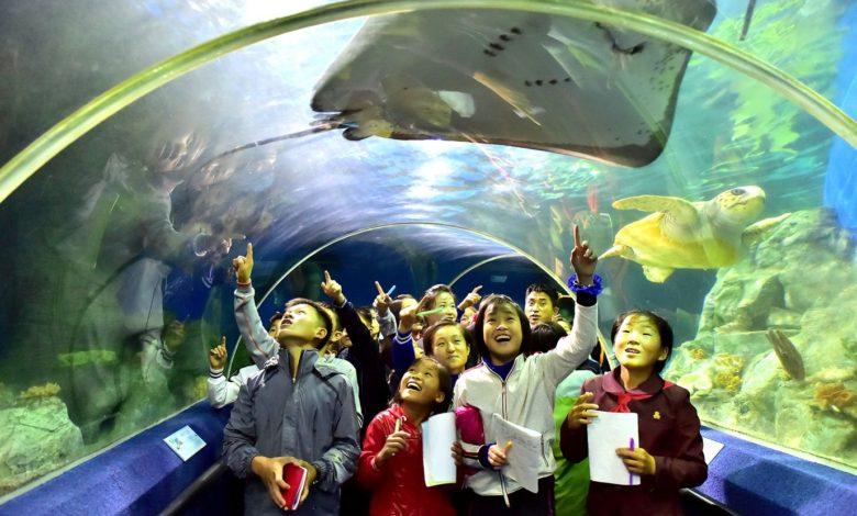 Schüler verbringen fröhlich ihre Ferientage.